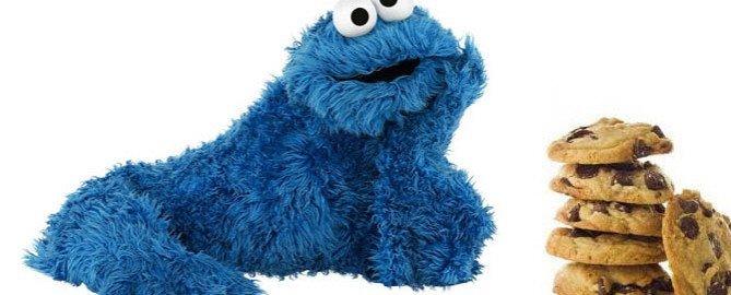pliki cookies