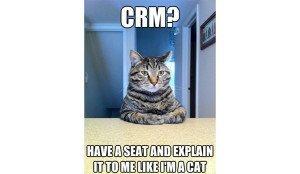 mobile crm cat mem