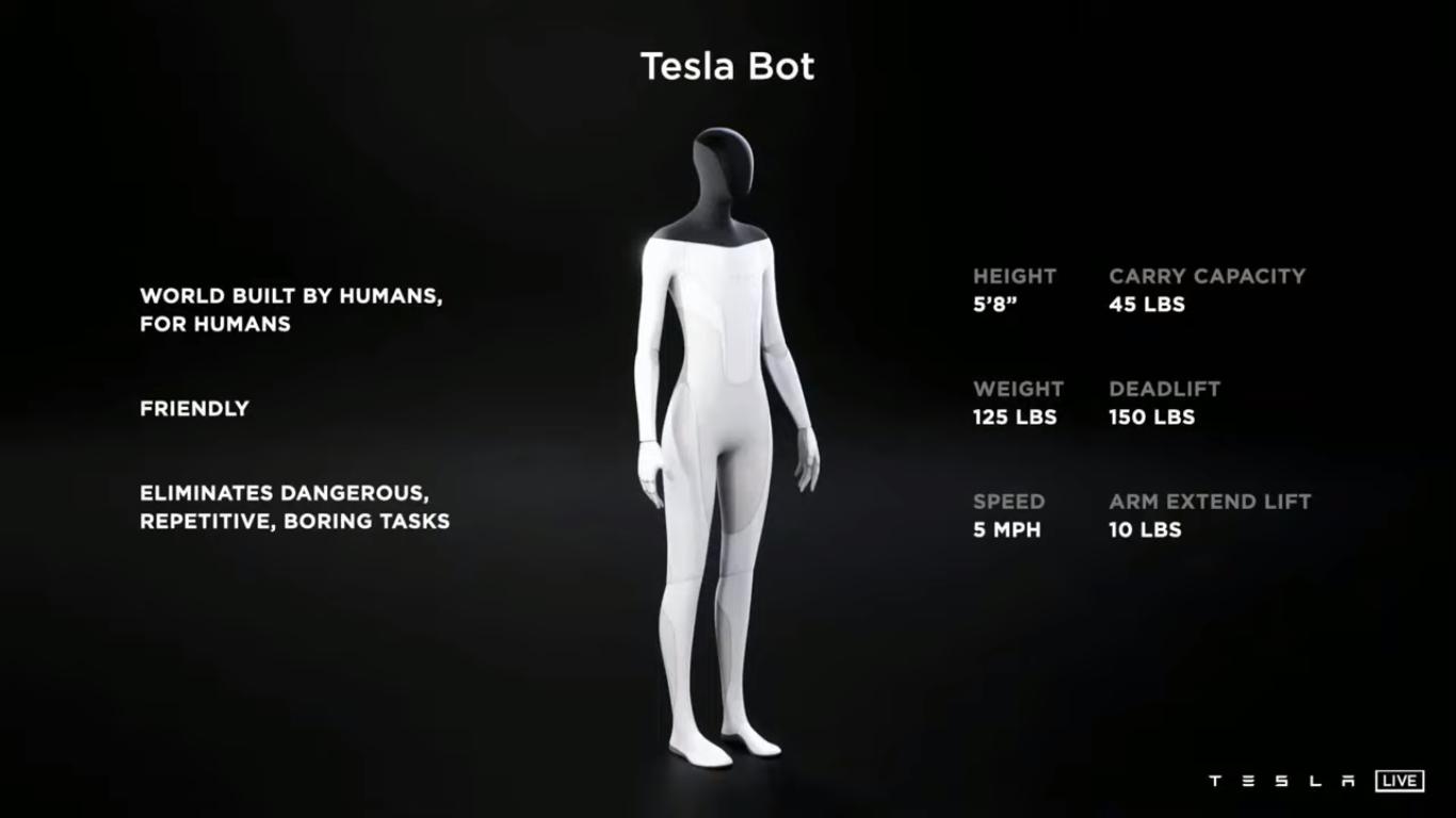 Waga, wzrost Tesla Bot